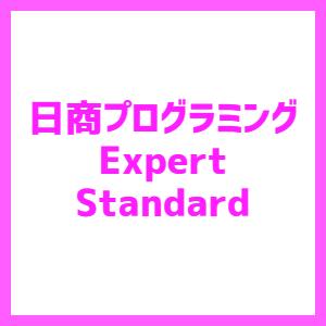 日商プログラミング検定 Expert/Standard