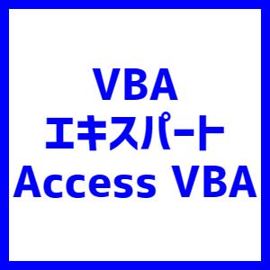 VBAエキスパート Access
